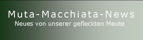 Muta Macchiata-News