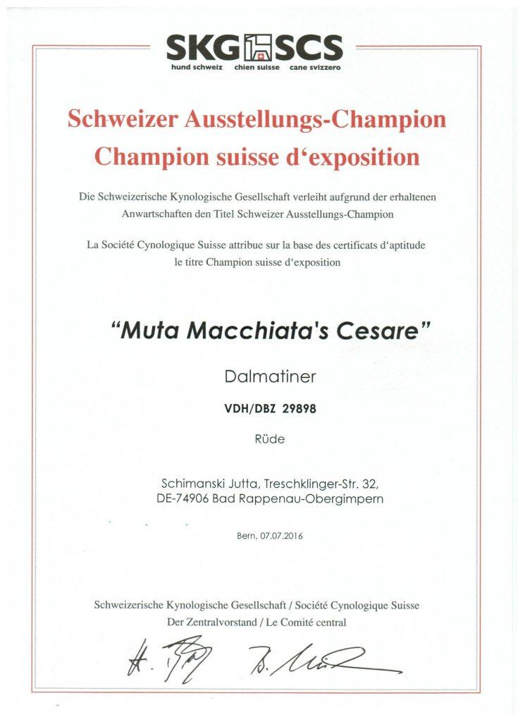 Titelurkunde Cesare CH